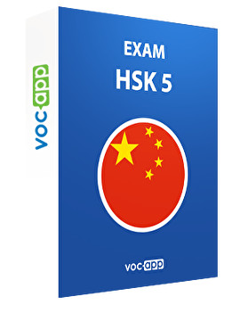 HSK 5 exam