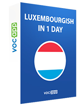 Luxembourgish in 1 day