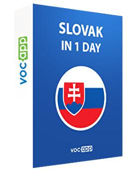 Slovak in 1 day