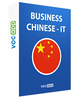 Business Chinese - IT