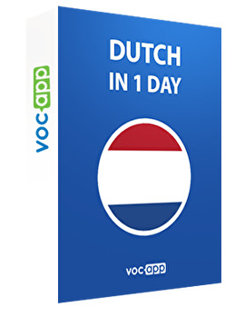 Dutch in 1 day