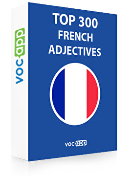 French Words: Top 300 Adjectives